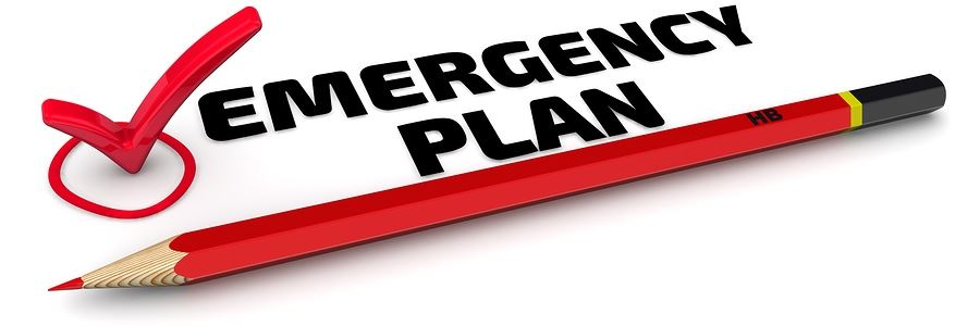 Red pencil and Red check mark with Emergency Plan written next to it